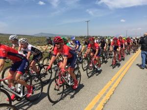 Pro Cycle Challenge